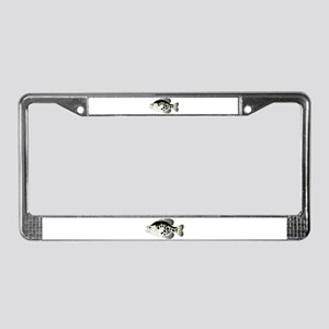 Black Crappie Sunfish fish License Plate Frame