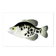 Black Crappie Sunfish fish Postcards (Package of 8