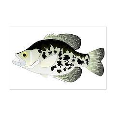 Black Crappie Sunfish fish Posters