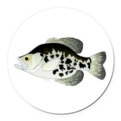 Black Crappie Sunfish fish Round Car Magnet