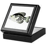 Black Crappie Sunfish fish Keepsake Box