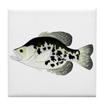 Black Crappie Sunfish fish Tile Coaster