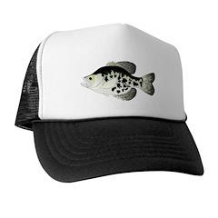 Black Crappie Sunfish fish Trucker Hat