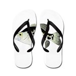 Black Crappie Sunfish fish Flip Flops