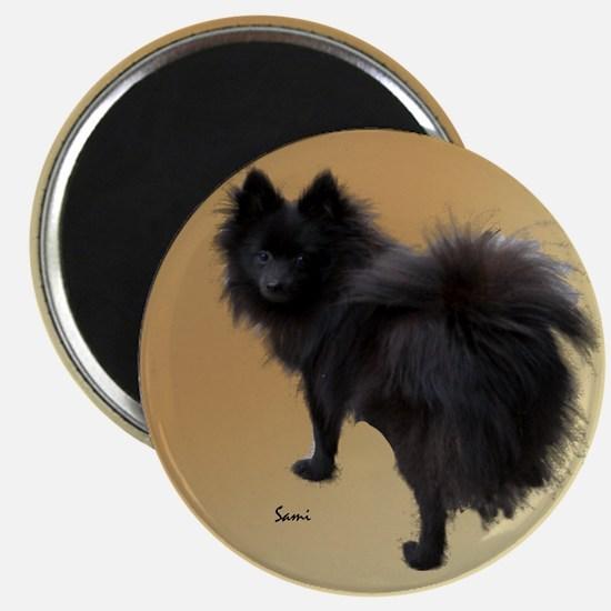 Black Pomeranian Magnet