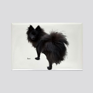 Black Pomeranian Rectangle Magnet