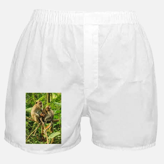 Togetherness on a Branch Boxer Shorts
