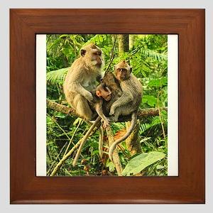 Togetherness on a Branch Framed Tile