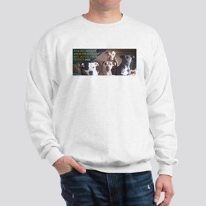 Pitbull Judgement Sweatshirt