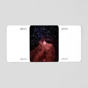 space39 Aluminum License Plate