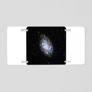 space41 Aluminum License Plate