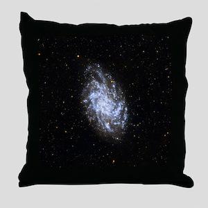 space41 Throw Pillow