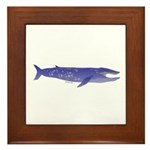Blue Whale 2 Framed Tile