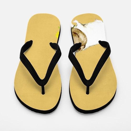 Cool Guinea Flip Flops