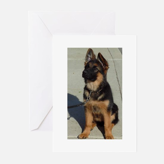 GSDcoats.com Greeting Cards (Pk of 10)