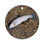 Taneycomo Rainbow Trout PS Ornament (Round)
