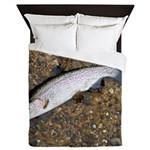 Taneycomo Rainbow Trout PS Queen Duvet
