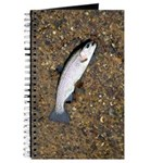 Taneycomo Rainbow Trout PS Journal