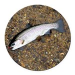 Taneycomo Rainbow Trout PS Round Car Magnet