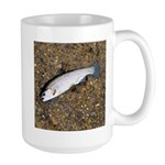 Taneycomo Rainbow Trout PS Mug