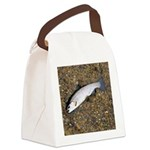 Taneycomo Rainbow Trout PS Canvas Lunch Bag