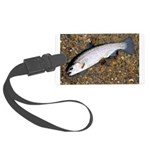 Taneycomo Rainbow Trout PS Luggage Tag
