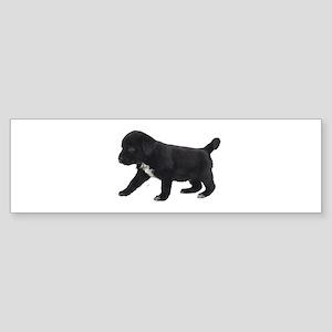 Labrador Retriever Puppy Sticker (Bumper)