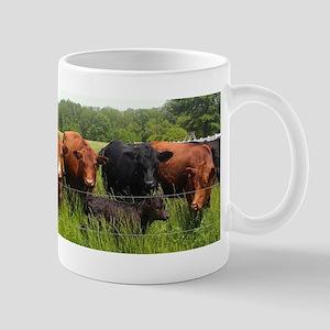 Simmentals Mug