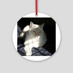 Flame Point Cat Keepsake (Round)