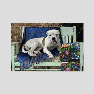 Pitbull Terrier Christmas Bob Rectangle Magnet