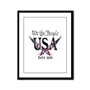 USA 2 Framed Panel Print