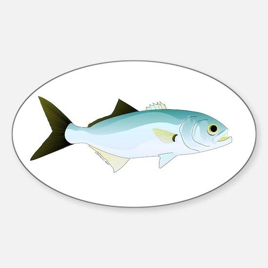 Bluefish Decal