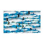 Montauk School of Fish Attack pattern 1 sq Wall De