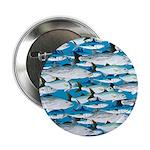 Montauk School of Fish Attack pattern 1 sq 2.25