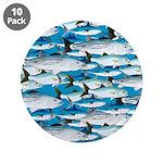 Montauk School of Fish Attack pattern 1 sq 3.5
