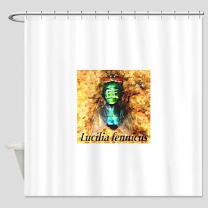 Fly Lark Lucilia fennicus Shower Curtain