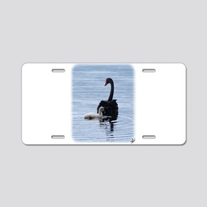 Black Swan and Cygnet 9Y885D-020 Aluminum License