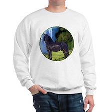 Hidden Horse Stallion Canyon Sweatshirt
