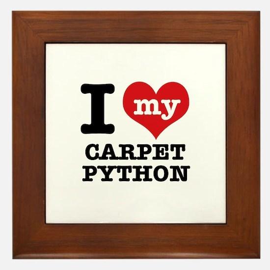 I love my Carpet Python Framed Tile