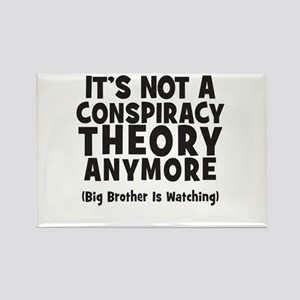 Its not a conspiracy theory anymore big brother Re