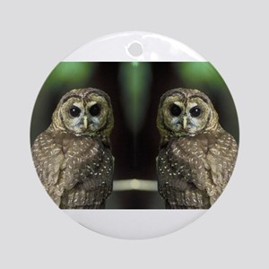 Who Gives Two Hoots Ornament (Round)