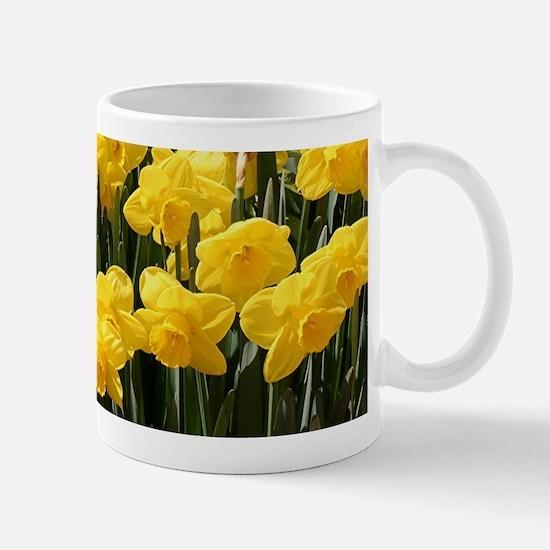 Daffodil flowers in bloom Mug