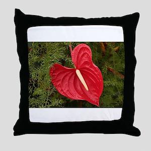Anthurium flower in bloom Throw Pillow