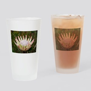 Protea flower in bloom Drinking Glass