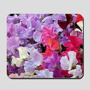 Sweet peas flowers in bloom Mousepad