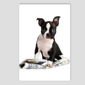 Boston Terrier Postcards (Package of 8)