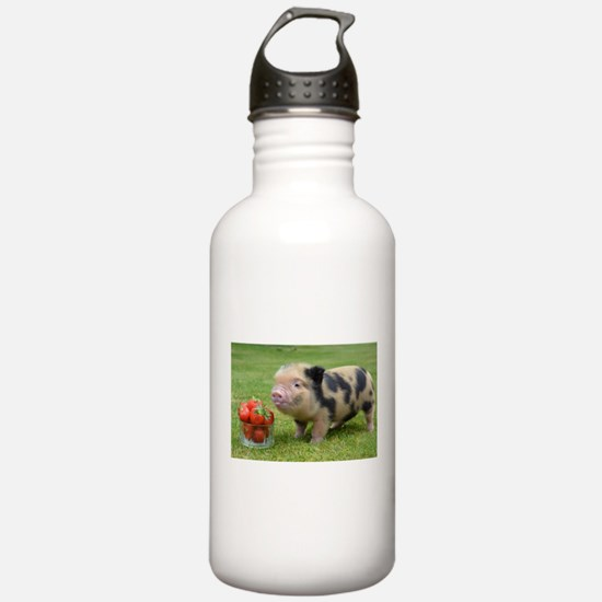 Micro pig with strawberries Sports Water Bottle