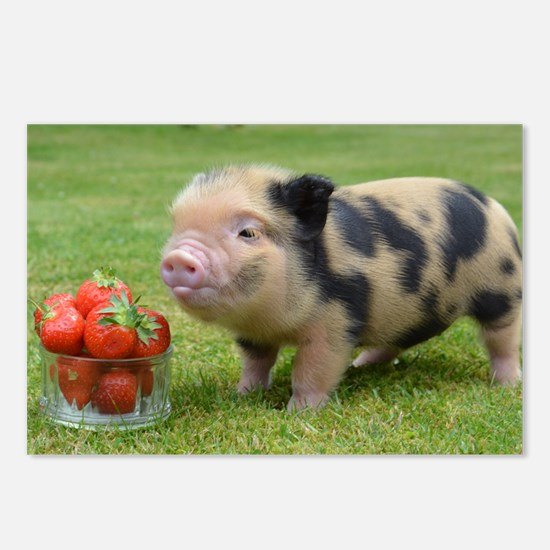 Little micro pig with strawberries Postcards (Pack