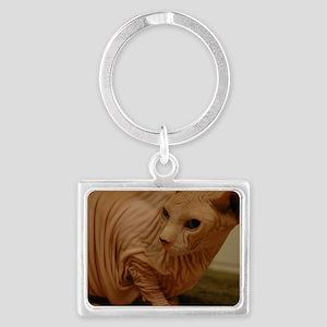 wrinklecat Keychains