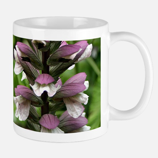 Oyster plant flowers in bloom Mug